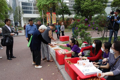 100,000 Tea Eggs are Distributed on a Street in Guan ... Picture Album One 1